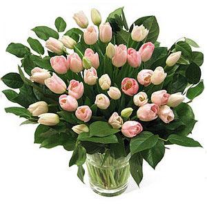 Букет из тюльпанов Лазурный берег