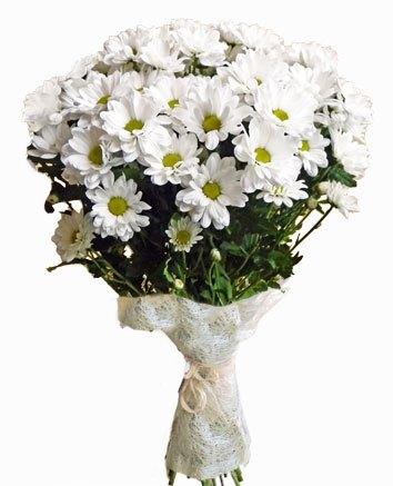 Букет из кустовых хризантем Наоми