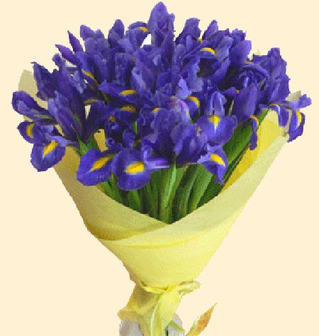 Букет ирисы заказать купить цветы в ангарске недорого