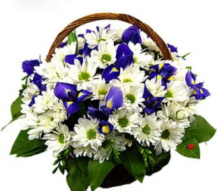 Цветочная корзина Мари